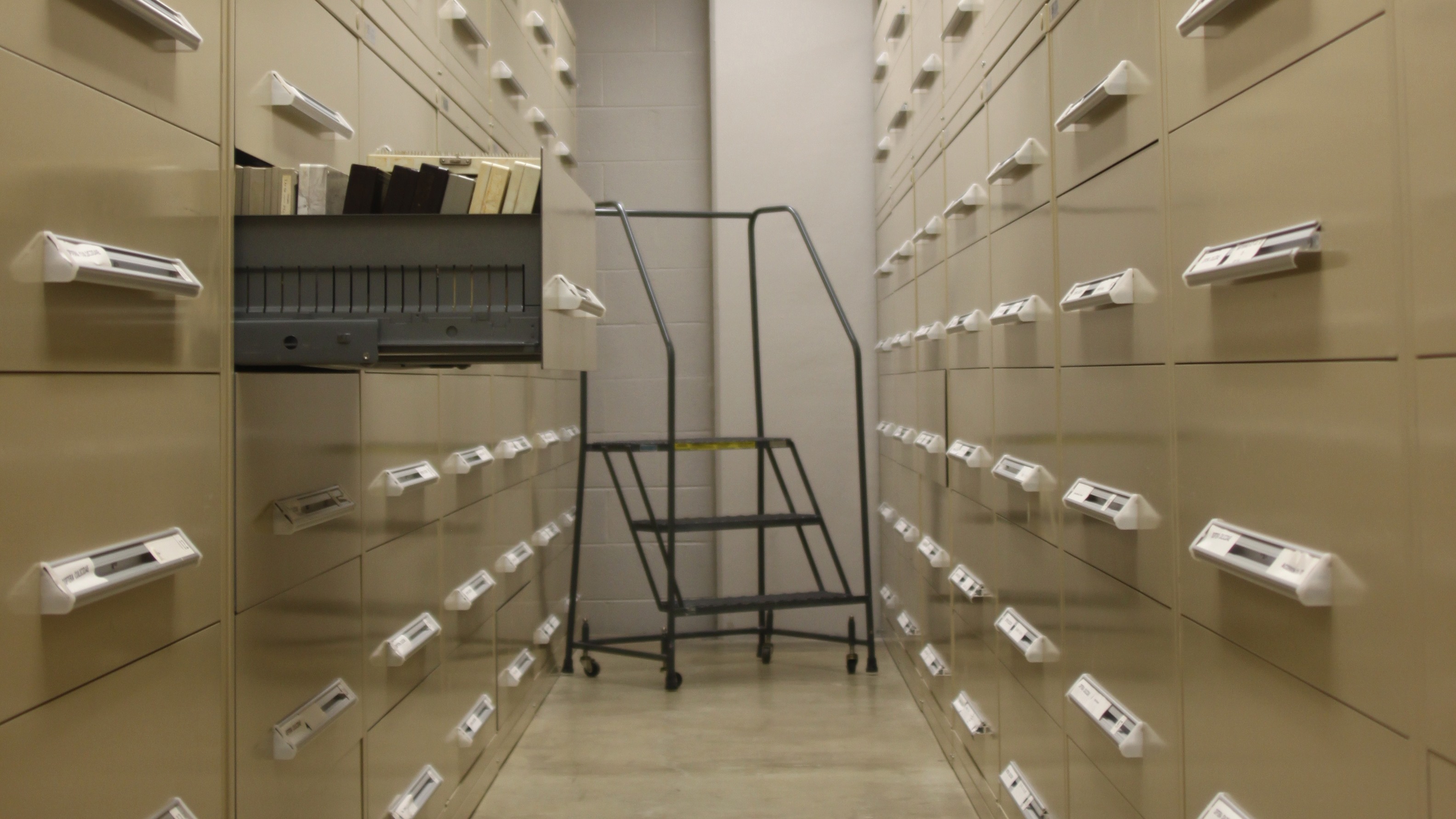 View of collections drawers